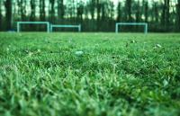 Photo of Playing field upgrade in planning stages