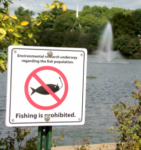 Dr. Kathleen Browne encourages students to refrain from fishing in Centennial Lake due to the levels of the decreasing fish population