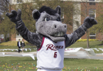 Rider's Bronc getting excited before a basketball game.