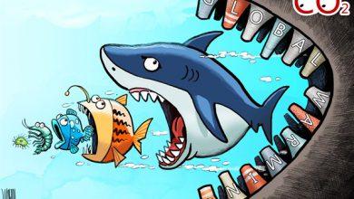 Photo of Cartoon