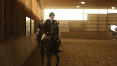 Photo of Dedication, 'positive energy' unite equestrian team