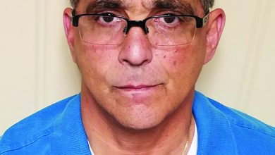 Photo of Berman pleads guilty