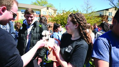 Photo of That's all, yolks: Flock of students participating in egg hunt prove sunny day is all it's cracked up to be