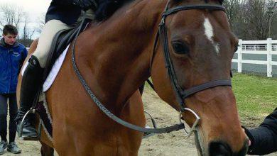 Photo of Rider's riders: Weismann represents Team USA