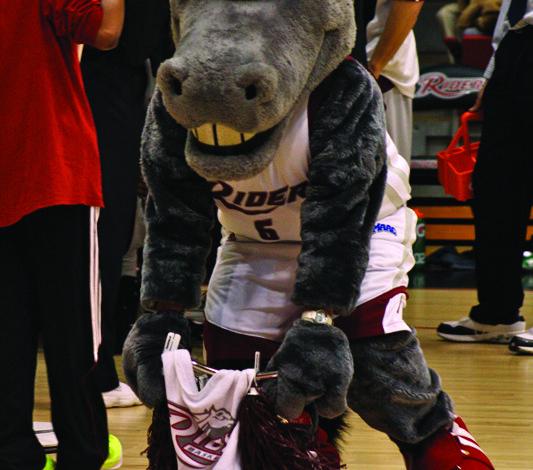 Photo of Unmasking the Mascot: AJ the Bronc