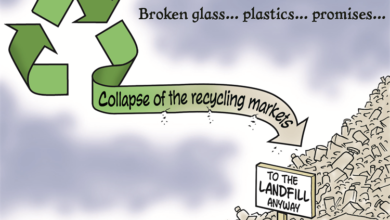 Photo of The truth about landfills: Where does your trash really go?